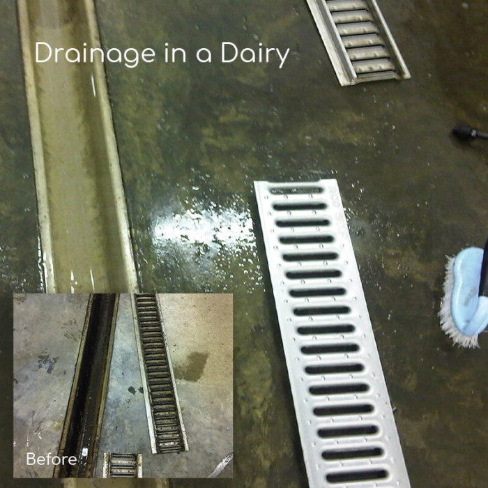Drainage in a Dairy